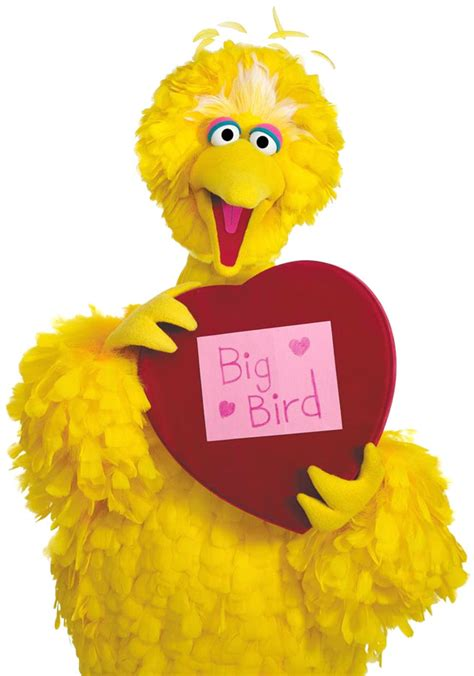 big bird debate wdse wrpt pbs