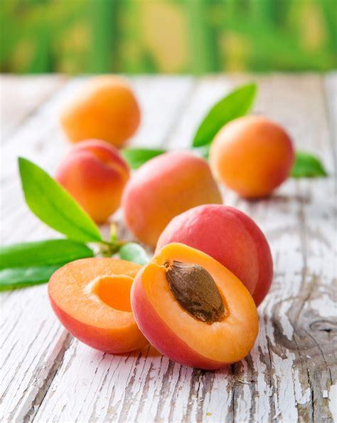 comment cuisiner les figues que faire avec des abricots acides fiche technique