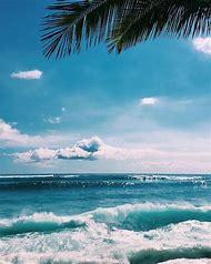 Scene Summer Tropical Beach
