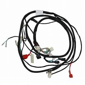 Main Wire Harness - Electric
