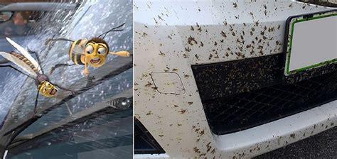 nettoyer des si鑒es de voiture en tissus 19 façons géniales pour faire briller sa voiture soi même meteofan