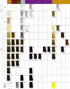 Idol High Lift Color Chart What Is The Difference Between High Lift Blond