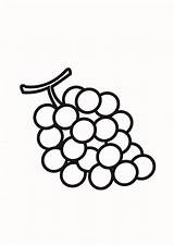 Grapes Coloring Pages Fruit Nutrious Colorluna sketch template