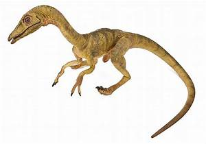 """Compsognathus """"Compy"""" screen-used dummy puppet from The Lost"""