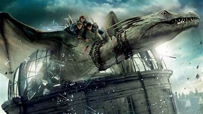 Potter Harry Dragon Dragons Hallows Deathly Wallpapers