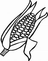 Corn Coloring Candy Ear Pages Drawing Getdrawings Clipart Stalk Cob Printable Colouring Getcolorings sketch template
