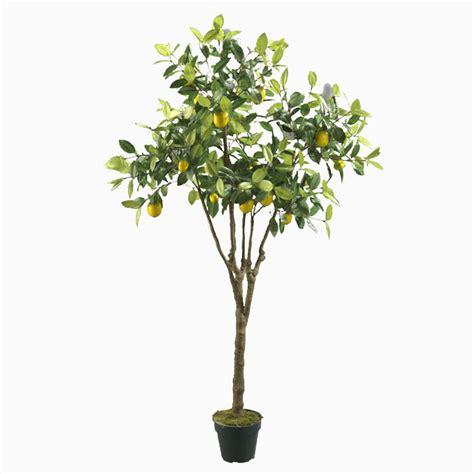 pot for lemon tree artificial lemon tree with pvc pot fruit trees