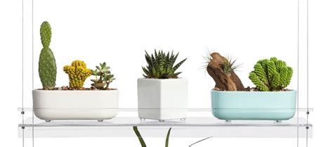 5 Breathtaking Floating Shelves That You Don't Have To Diy