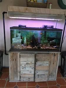 Decoration Aquarium Maison
