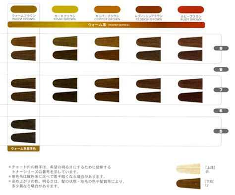 Ingredients Allergy Oreal Diacolor Richesse Colour Chart