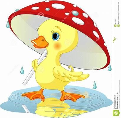 Duck Umbrella Clipart 123clipartpng Cliparts Similar