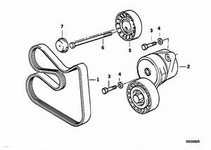 Bmw M50 Belt Diagram  Bmw  Free Engine Image For User