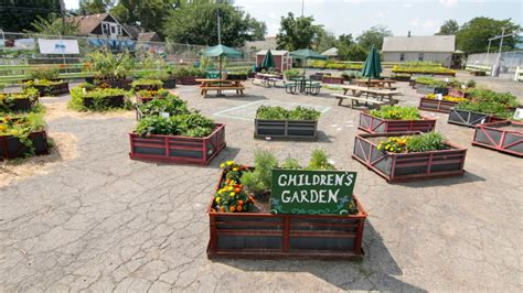 gm reuses  shipping crates  urban gardening project
