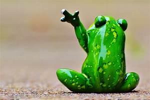 Frosch Bilder Lustig : kostenloses foto frosch winken abschied lustig kostenloses bild auf pixabay 986027 ~ Whattoseeinmadrid.com Haus und Dekorationen