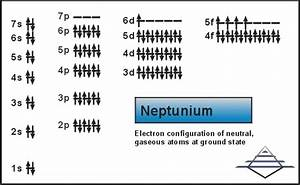 Neptunium  Atom Properties