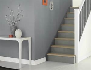 Flur Gestalten Wände Grau : wohnraumgestaltung mit farben 50 beispiele ~ Bigdaddyawards.com Haus und Dekorationen