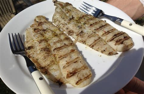 grouper fish grilled taste recipe fillet frozen flavor flakes texture they