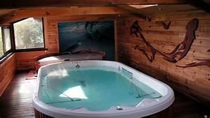Spa De Nage Avis : best achat spa de nage afs with spa de nage intrieur ~ Melissatoandfro.com Idées de Décoration