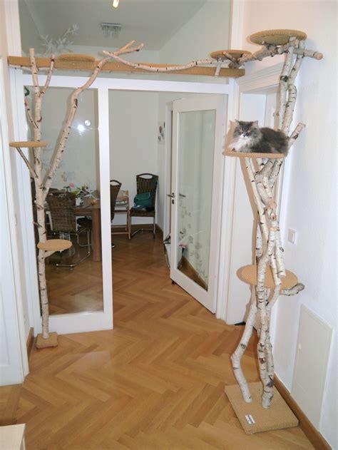 Wir Bauen Ihren Kratzbaum!  Sandy's Cat World Pinterest