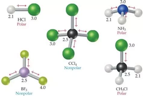 Is C3o3h6 Polar Or Nonpolar? Quora