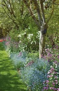 Arbre De Jardin. awesome arbre pour allee de jardin photos design ...