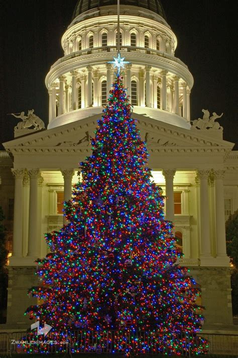 sacramento christmas images  pinterest