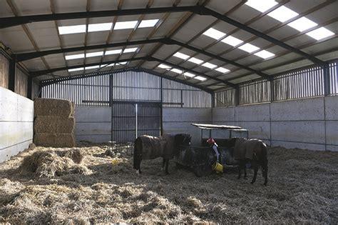 loose horses housing barns behind secrets yard horse farm yorkshire low jacqueline coward onions lucky barn champion dalby moor village