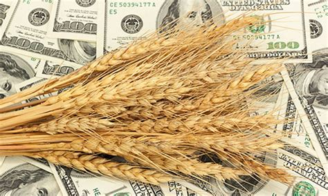 50 Billionaires Receive $6.3 Million in Federal Farm ...