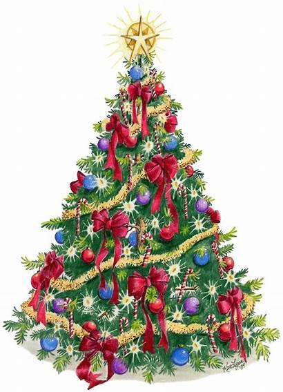 Tree Christmas Trees Holiday Navidad Near