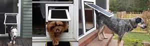 dog door design khosrowhassanzadehcom With best dog door for security