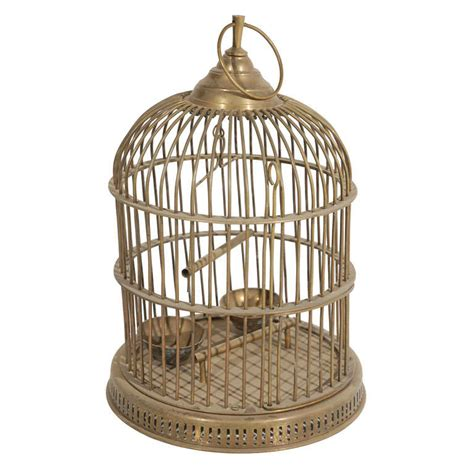 antique parrot cage old birdcage www imgkid com the image kid has it