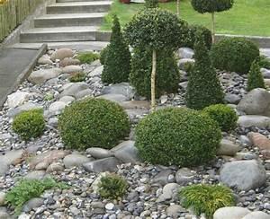 Steine Für Steingarten : geeignete pflanzen fur vorgarten ~ Lizthompson.info Haus und Dekorationen