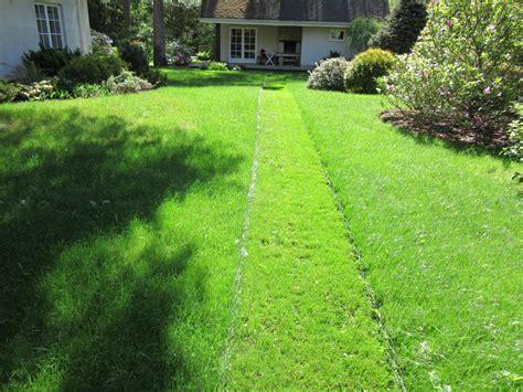 Dārza kopšanas serviss - Dārza arhitektūra, dārza darbi
