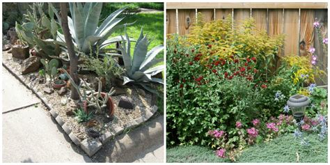 how much does xeriscaping cost your garden could look like this if you xeriscape eieihome