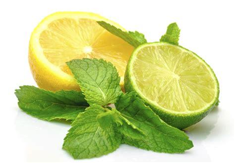 Natural Remedies To Lighten Dark Lips  Gsr's Health