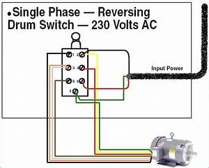 Trying To Decide On A 2 Or 3 Pole Drum Switch For My Single Phase 115v Motor  Today  North