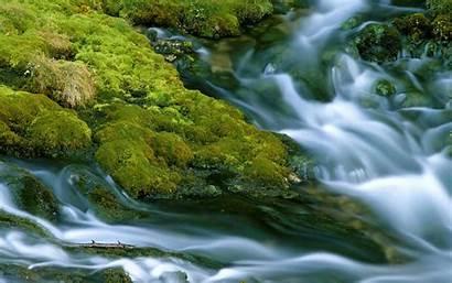 Streams Wallpapers Stream Desktop Nature Mobile Snap