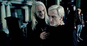 New Species Of Wasp Named After Lucius Malfoy