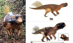scientists discover super cute dinosaur