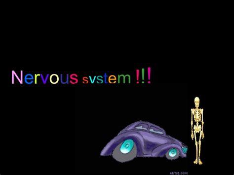nervous system ppt 1