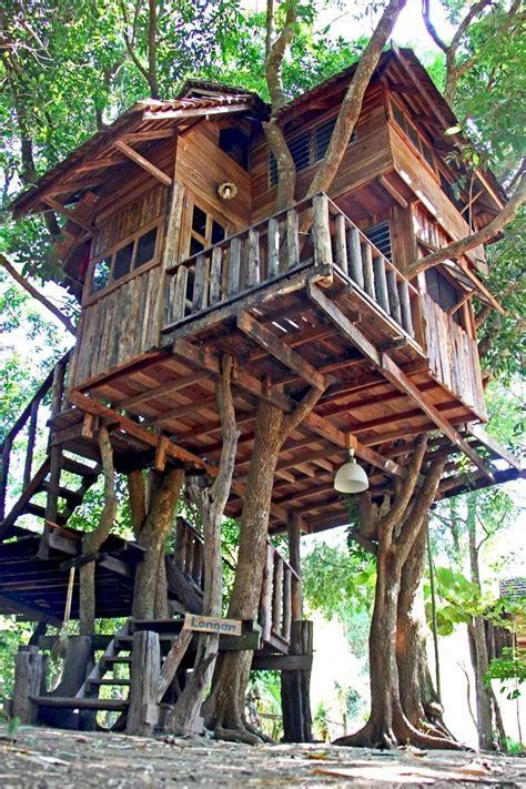 diy treehouse   summer times elonahomecom cool tree houses tree house diy