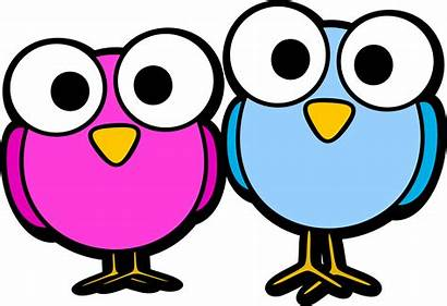 Clipart Owl Eyes Eyeball Transparent Pair Bird