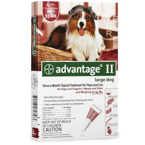 month advantage ii flea control large dog  dogs