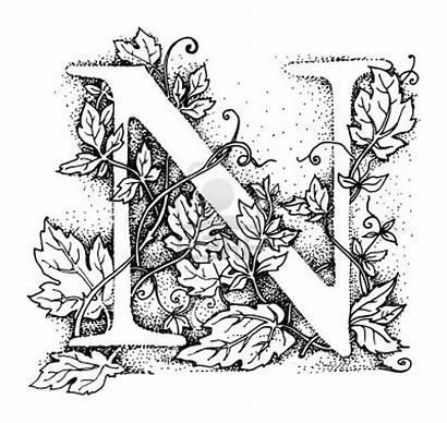 Calligraphy Alphabet Stencils Letter Letters Initial Stencil