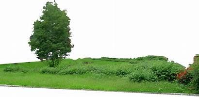 Grass Mountain Deviantart