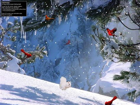 Free Animated Winter Wallpaper - winter screensavers and wallpapers wallpaper cave