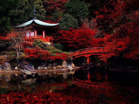 japanese garden temple japanese gardens wallpapers wallpaper cave