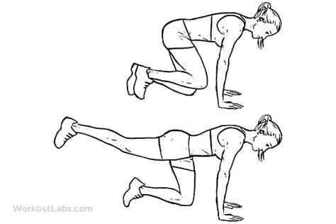 Standing Kickbacks Exercise by Donkey Kicks Workoutlabs