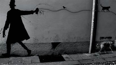 Random Kenny Padova Graffiti Cats Italy Wallpapers