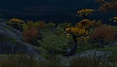 Shivering Isles: Images - The Elder Scrolls Wiki